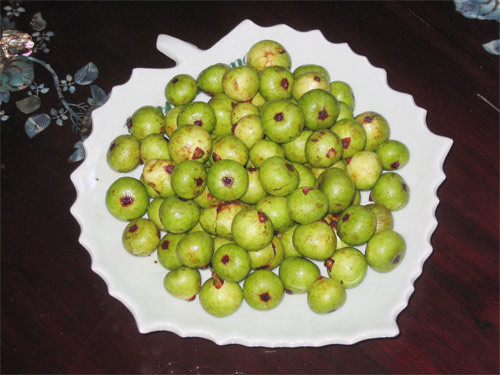 Muốn trị táo bón nhanh hãy dùng quả sung
