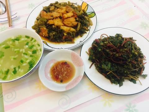Hướng dẫn cách chữa bệnh trĩ bằng rau sam