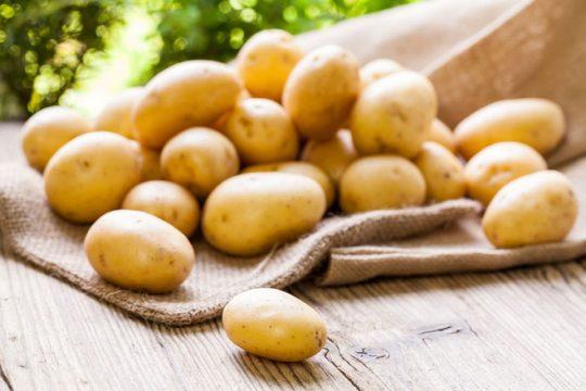 Khoai tây cũng là thực phẩm điều trị bệnh trĩ rất hay