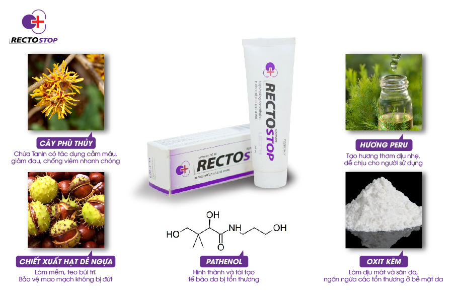Thuốc trĩ Rectostop
